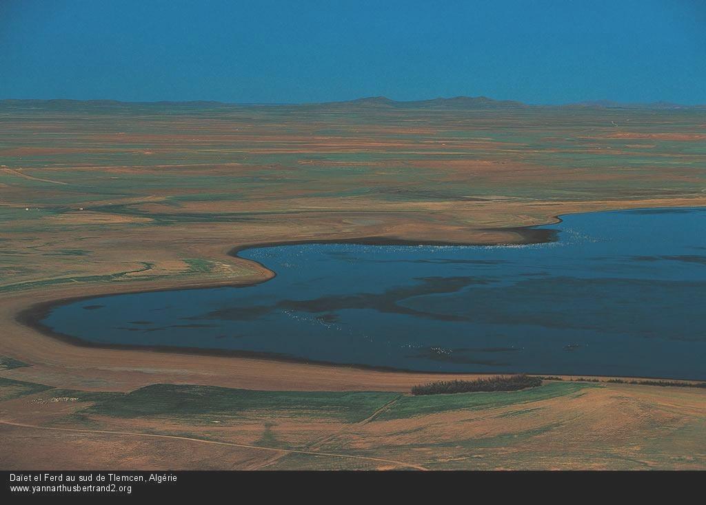 algerie-vue-du-ciel219.jpg