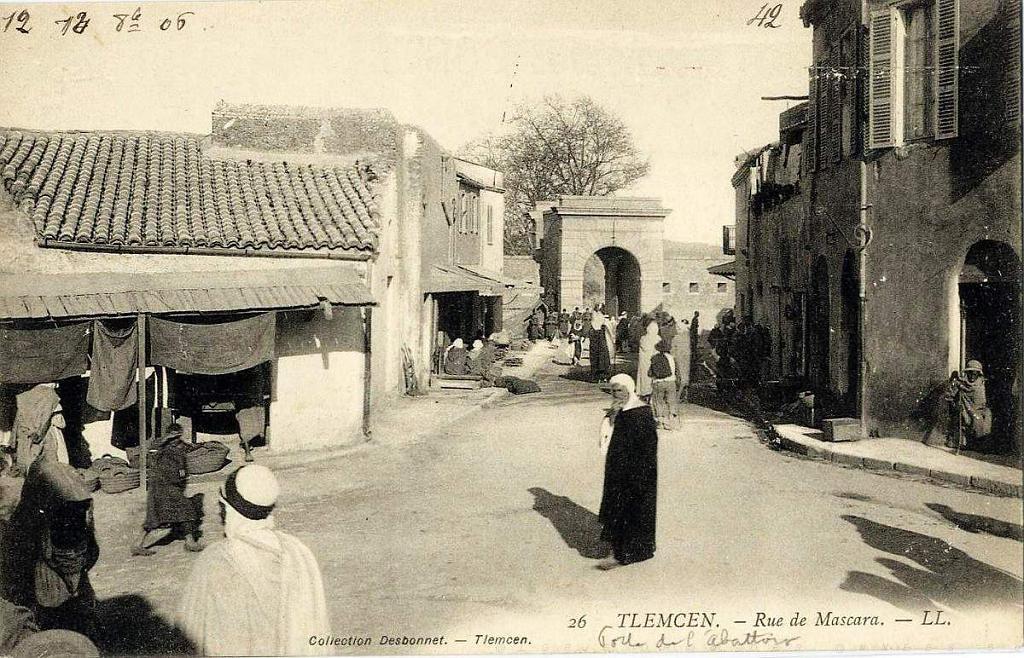 Tlemcen 085 collection montaner